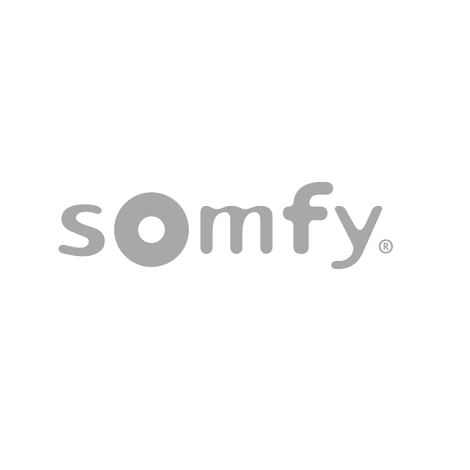 Somfy Home Alarm + Indoor Camera + Outdoor Camera Wit